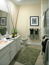 Staged 1st Floor Master Bathroom In A Similar Chateau Model Home